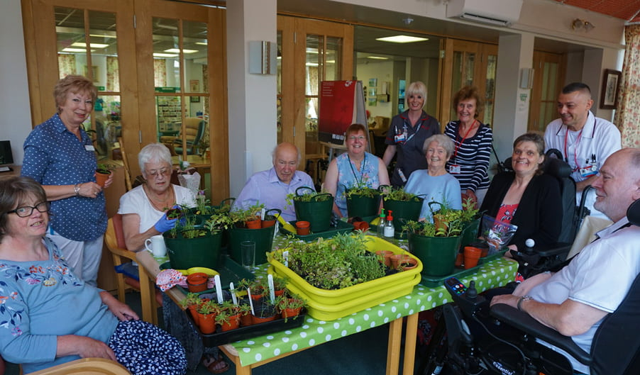 Ryton Garden Organic - The Myton Hospices - Horticultural Therapy programme