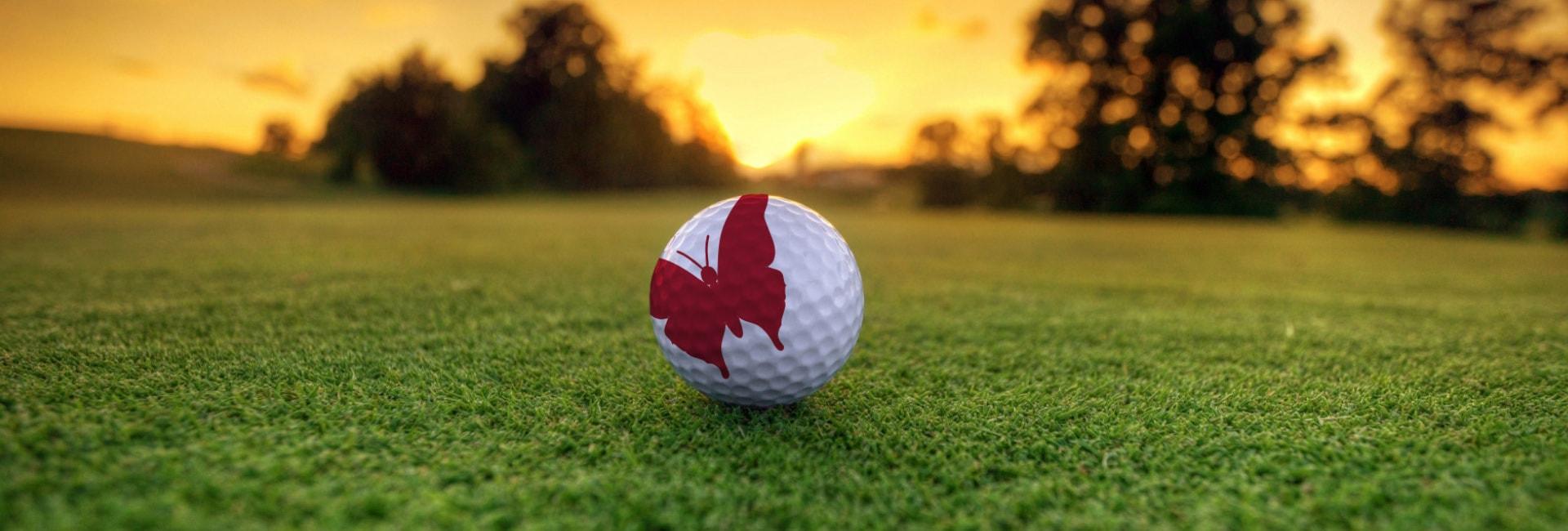 The Myton Hospices - Golf Day 2019 - Flex Slider