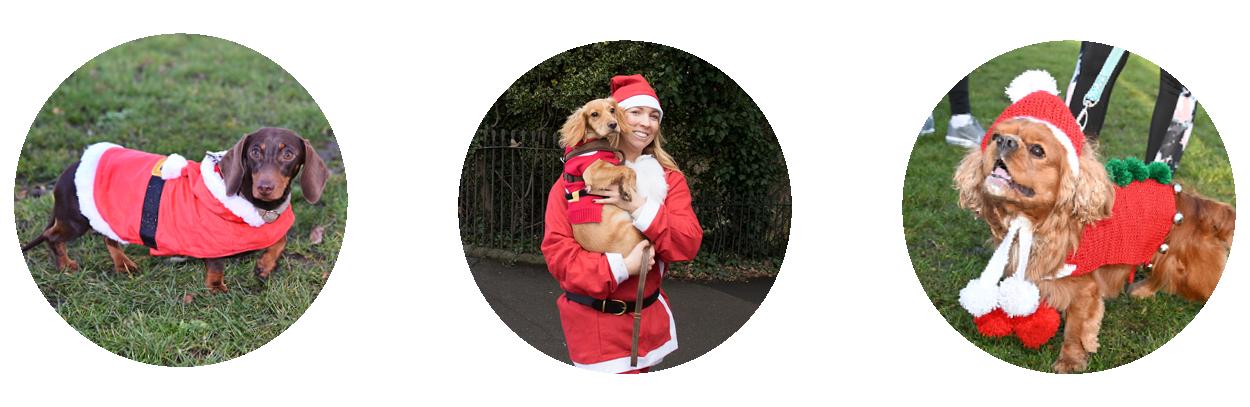 The Myton Hospices - Virtual Santa Dash 2020 - Page Banner